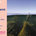 Flyer : Exposition le réel Site Saint-Sauveur Terres de Montaigu