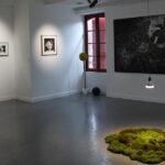Photo : vue de l'exposition Alice Site Saint-Sauveur Terres de Montaigu